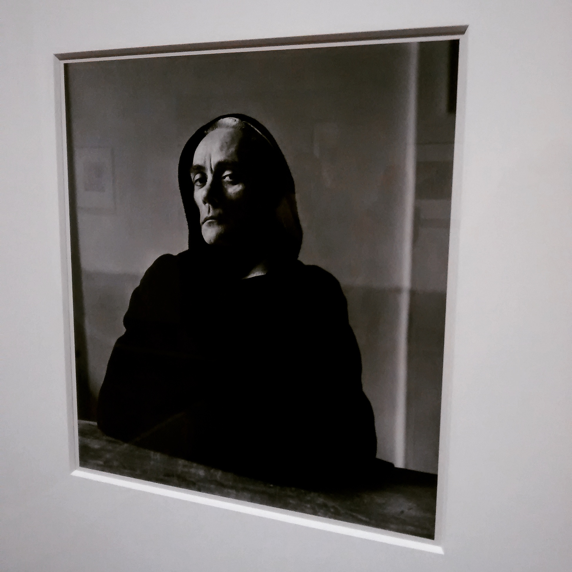 Irving Penn: Centennial at The Metropolitan Museum of Art