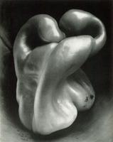 Pepper, Edward Weston, 1930